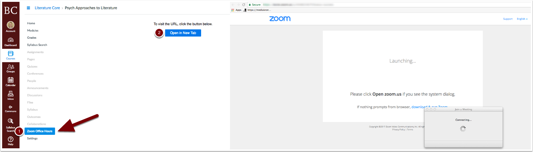 Zoom opening in Canvas