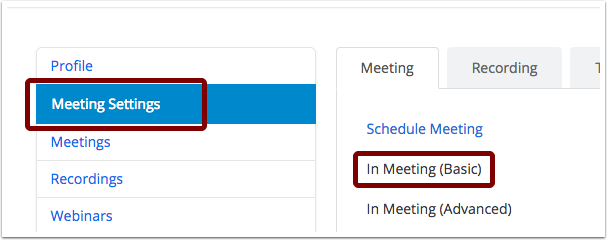 Screenshot of Zoom website with Meeting Settings selected in blue on the lefthand side and In Meeting (Basic) selected on the right hand side