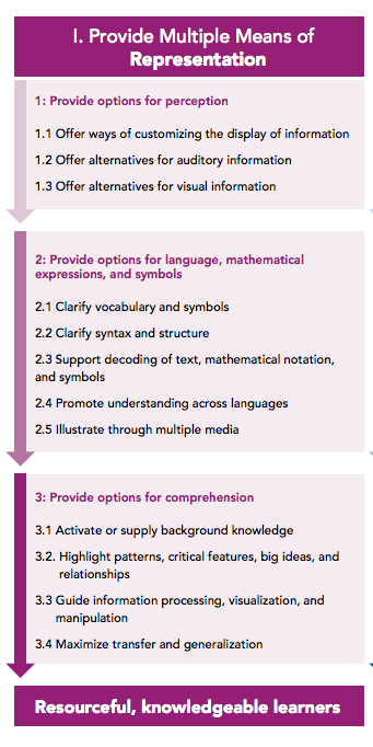 1. Provide options for perception, including 1) offer ways of customizing the display of information; 2) offer alternatives for auditory information; 3) offer alternatives for visual information. 2. Provide options for language, mathematical expressions, and symbols, including 1) clarify vocabulary and symbols 2) clarify syntax and structure 3) support decoding of text, mathematical notation, and symbols 4) promote understanding across languages 5) illustrate through multiple media. 3. Provide options for comprehension, including 1) activate or supply background knowledge 2) highlight patterns, critical features, big ideas, and relationships 3) guide information processing, visualization, and manipulation 4) maximize transfer and generalization.