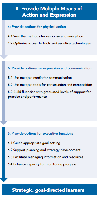 4. Provide options for physical action, including 1) vary the methods for response and navigation; 2) optimize access to tools and assistive technologies. 5. Provide options for expression and communication, including 1) use multiple media for communication; 2) use multiple tools for construction and composition; 3) build fluencies with graduated levels of support for practice and performance. 6. Provide options for executive functions, including 1) guide appropriate goal-setting; 2) support planning and strategy development; 3) facilitate managing information and resources; 4) enhance capacity for monitoring process.